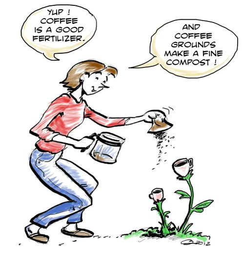 Are your plants drinking coffee?